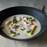thai cocout soup 2
